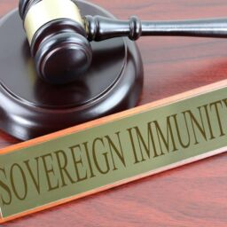 Sovereign Immunity - Shivanshika