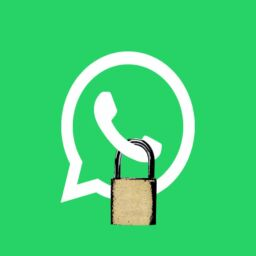 WhatsApp Privacy Policy - Shivendra & Aamna