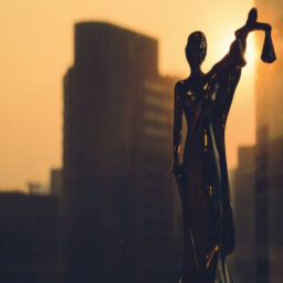 ANALYSING THE EFFECTIVENESS OF PREVAILING SPECIAL STATUTES
