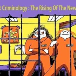 FEMINIST CRIMINOLOGY - THE RISING OF A NEW BRANCH